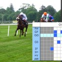 Visual Form Guides for Horse Racing – Going Grid
