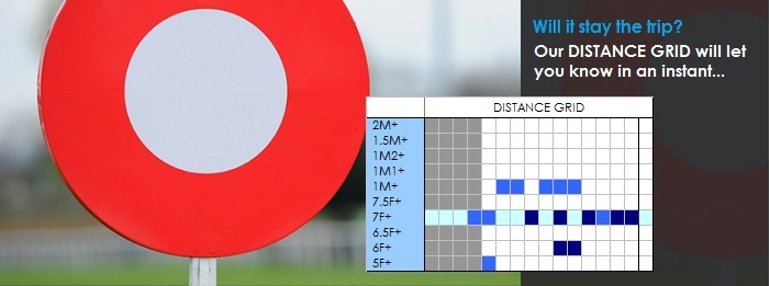 Horse Racing Form Guides - Distance Grid
